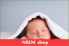 Non-rapid eye movement (NREM) sleep