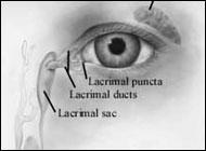 Болезнь Альцгеймера будут диагностировать по глазам